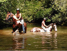 Agritourism  Horseback.jpg