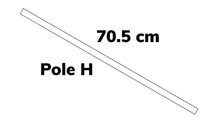 Pole H