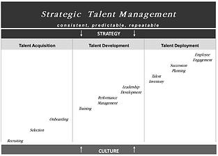 Chapt1_StrategicTalentManagementCorridor