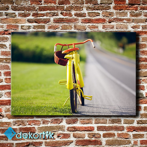 Sarı Bisiklet Tablo