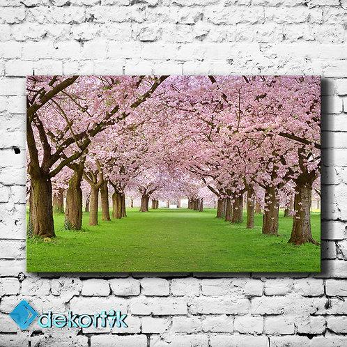 Bahar Ağaçlar Kanvas Tablo