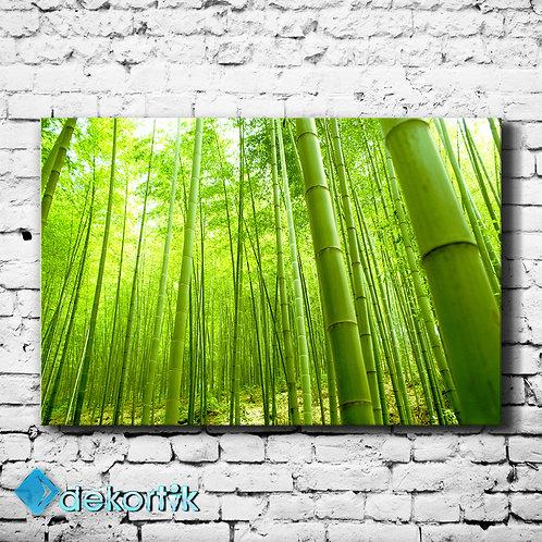 Yeşil Bambu Kanvas Tablo