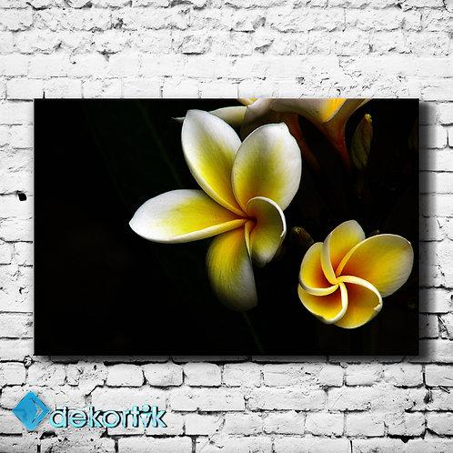 Siyah Zemin Sarı Çiçekler Tablo