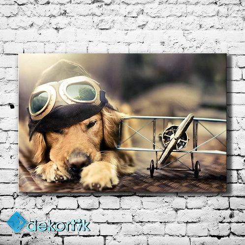 Pilot Köpek Tablo