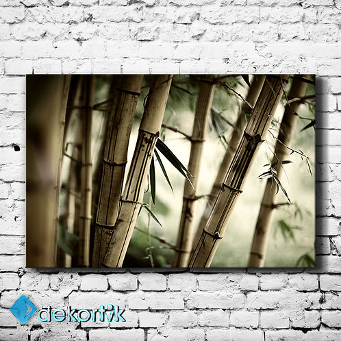 Kuru Bambular Tablo