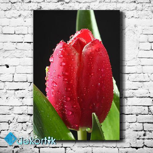 Red Tulips Tablo