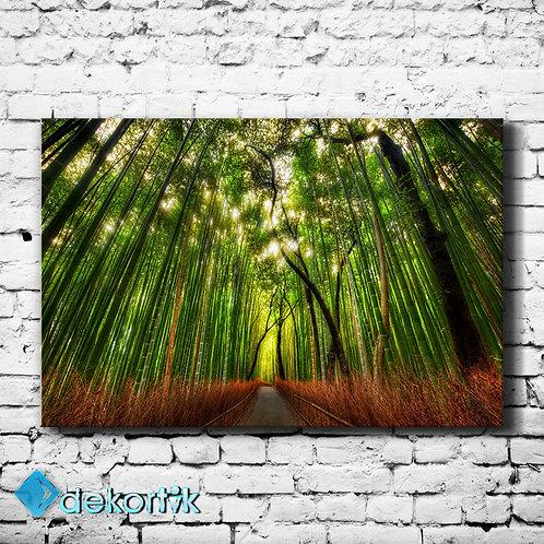 Natural Banbu Ormanı Tablo