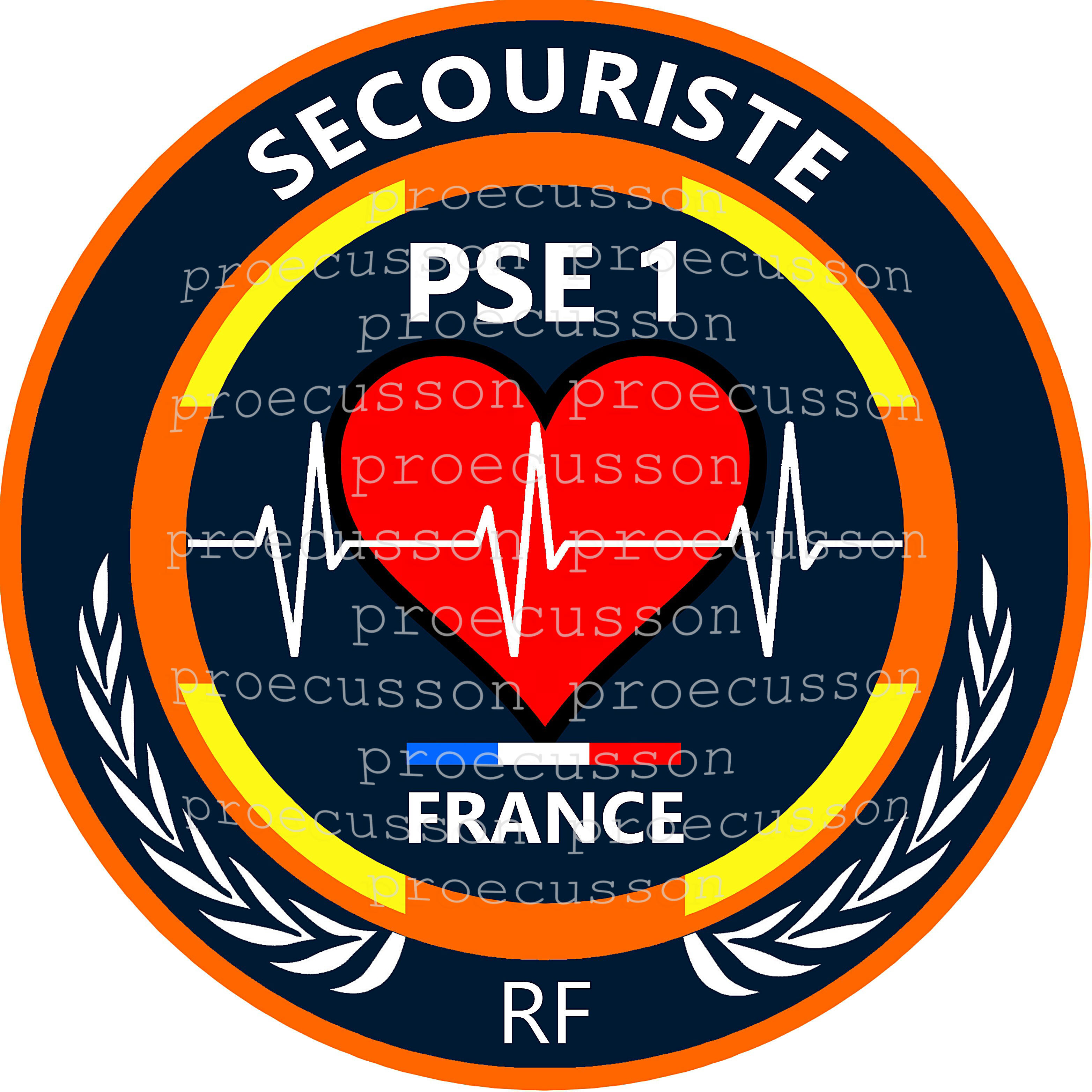 SECOURISTE PSE1