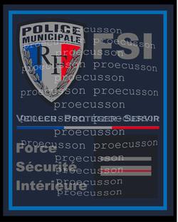POLICE MUNICIPALE FORCE SÉCURITÉ INTÉRIEURE FSI