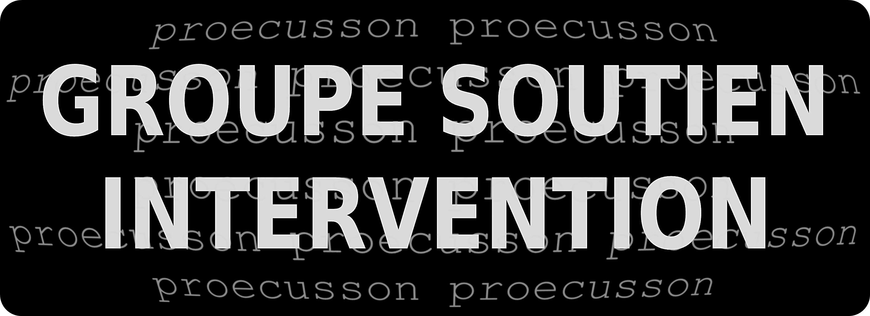 POLICE MUNICIPALE GROUPE SOUTIEN INTERVENTION