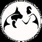 Logo TCCU 2017