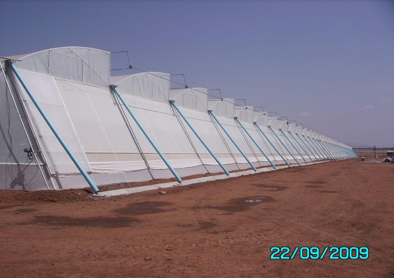 Tropic 6.4m Greenhouse