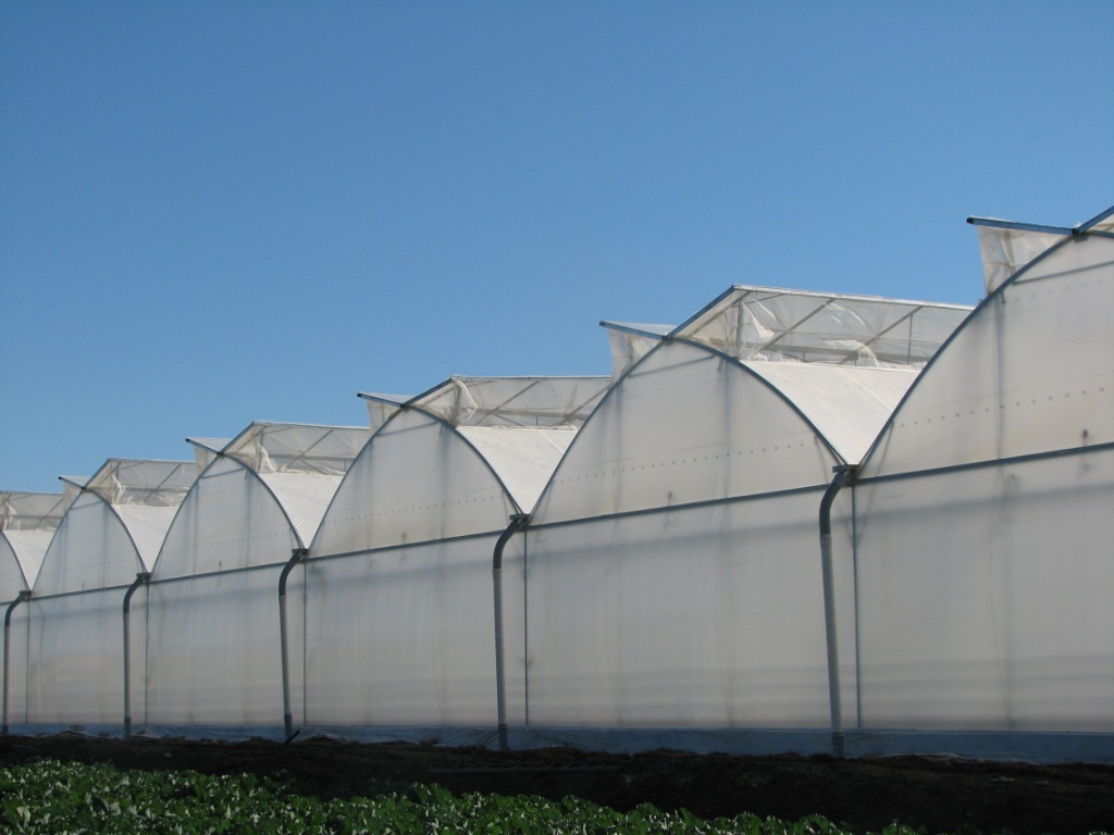 Classic Double Roof Vent Greenhouse