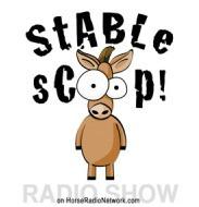 http://stablescoop.horseradionetwork.com/2017/03/03/447-jaime-jackson-on-laminitis-and-paddock-paradise/