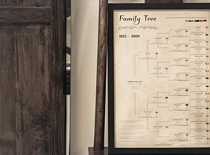 Personalised 5 Generation Family Tree on bench (compressed).JPG