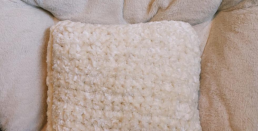 Plush Velvet Throw Pillow