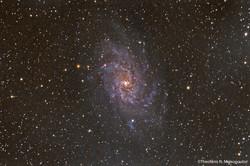 M33 Galaxy by Theofanis Matsopoulos