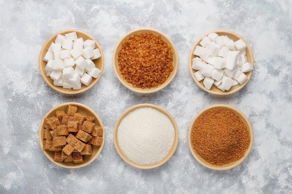 ¿Qué son los azúcares?