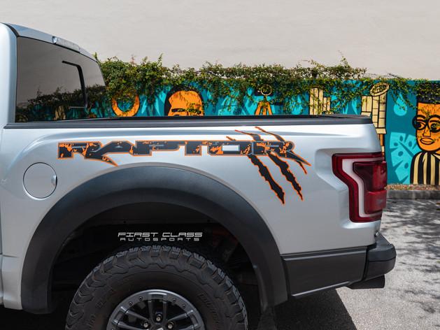 ford raptor custom stripes detail.jpg