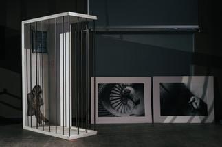 Indelebile - Installazione olio su tela, sbarre di ferro, pannelli di legno - 2019 - Rosalba Castelli