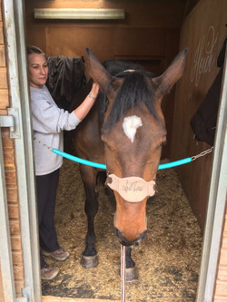 bladder meridian therapy