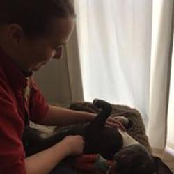 staffy massage