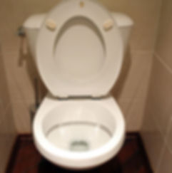 A clean toilet that not plugged