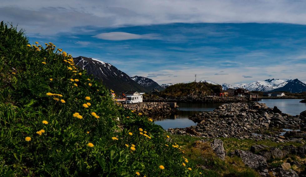 Sommer i Lofoten.jpg