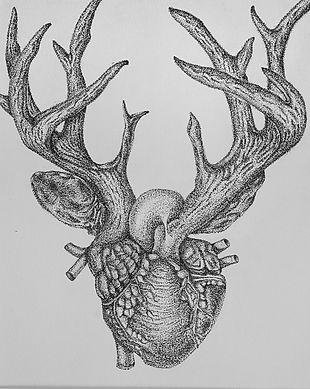 deer heart2.jpg