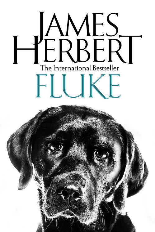 Fluke (James Herbert)