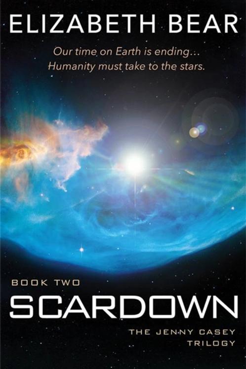 Scardown (ELIZABETH BEAR)