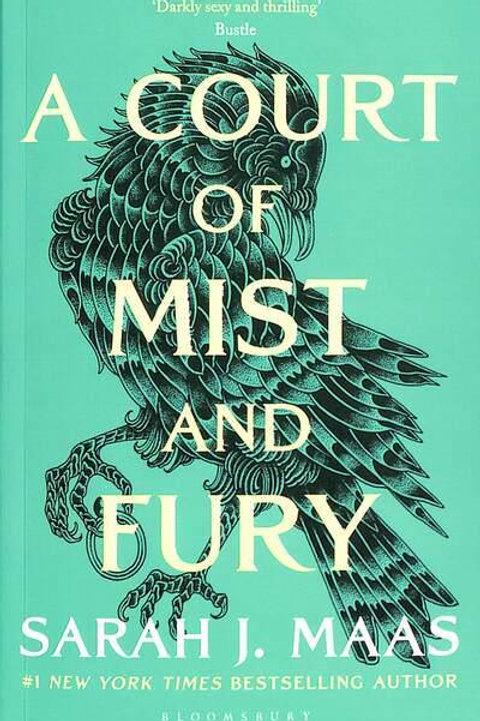A Court of Mist and Fury (Sarah J. Maas)