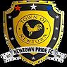 newtownpridelogo.png