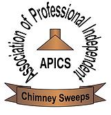 APICS 3.png