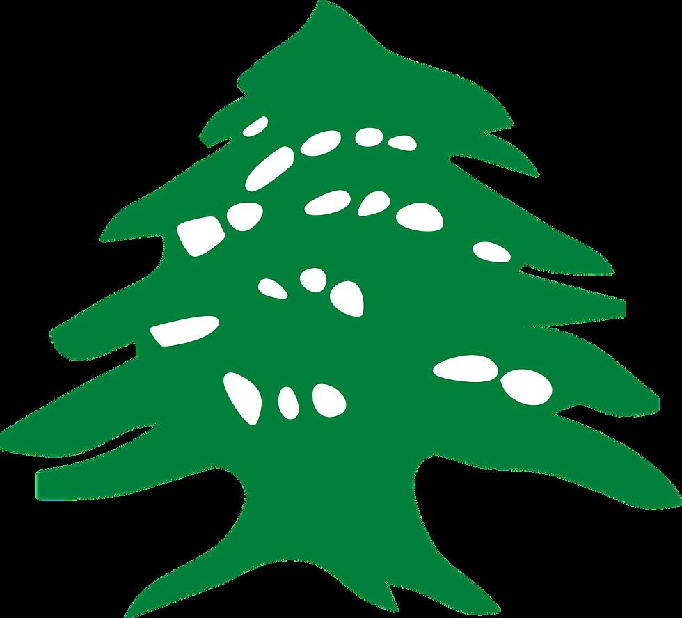 green-42112_1280
