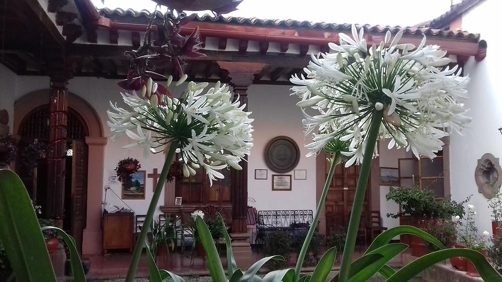 La casa de las orquídeas