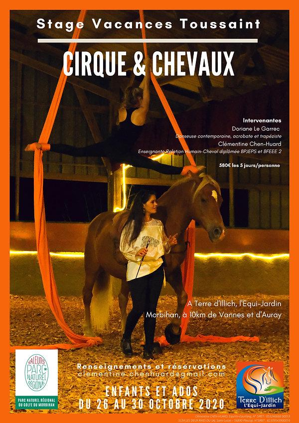 affiche stage cirque.jpg