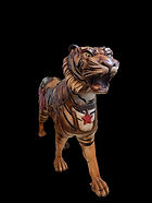PTC Tiger