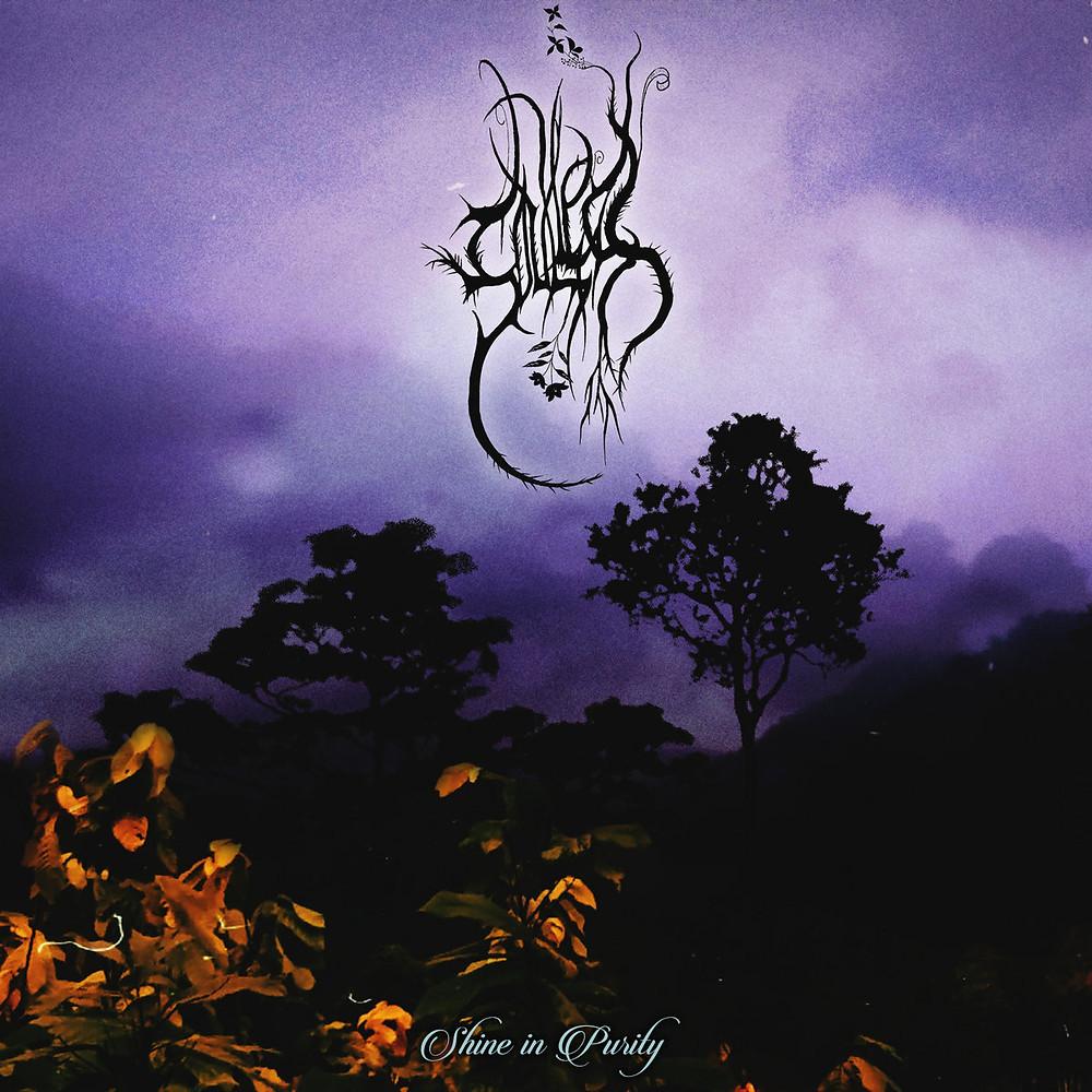 Soulless's black metal album Shine in Purity
