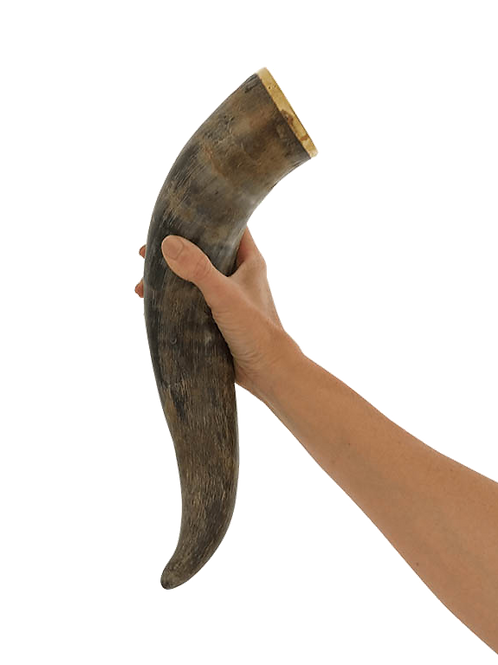 Personalized Engraved Large Natural Finish Drinking Horn