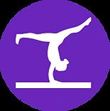 gymwins_logo.png