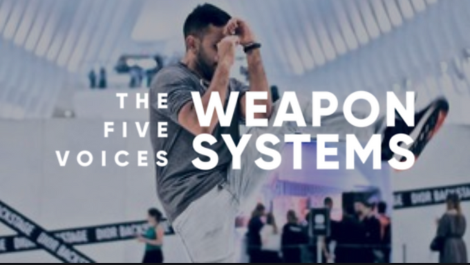 5 Voices Weapon Systems