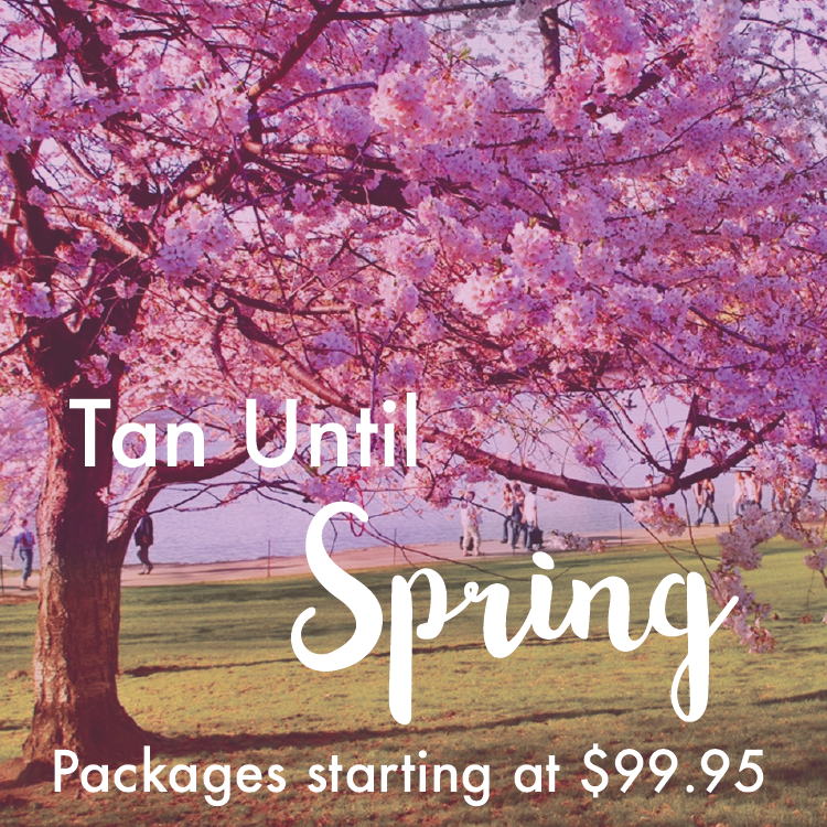 Tan until spring-01.png