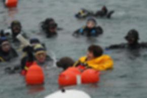 Barco in Acqua.jpg