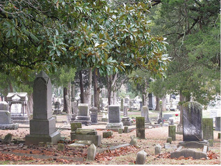 On Reading and Cemeteries