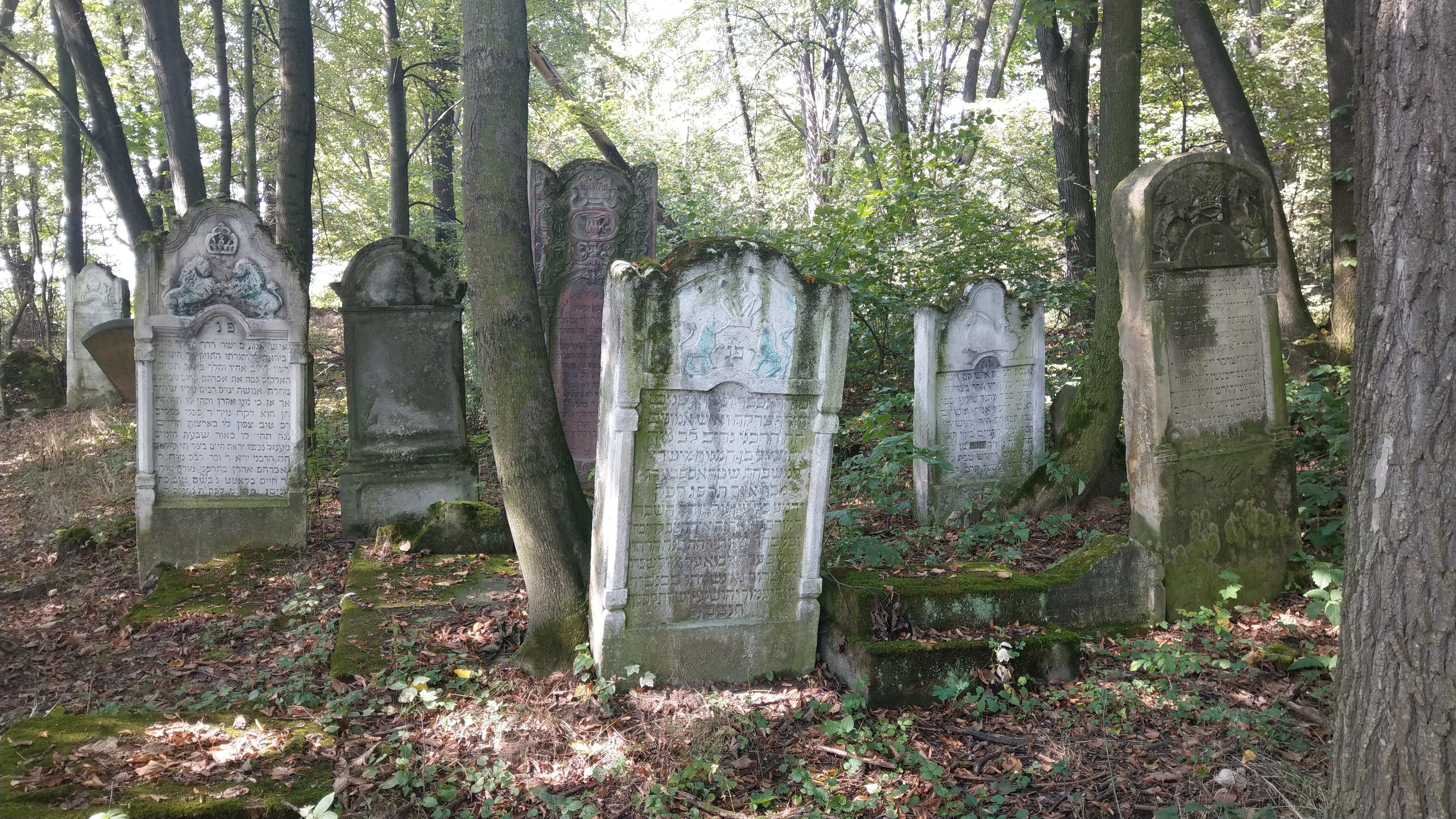בית הקברות היהודי של ירוסלב