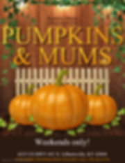 pumpkins and mums graphic.JPG