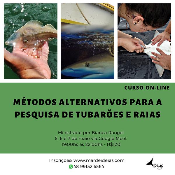 Cartaz tubaroes 2.png