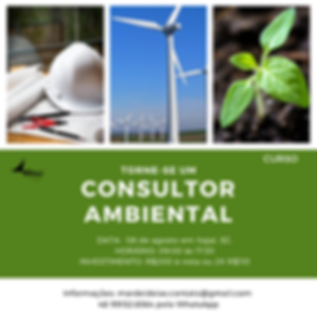 consultor ambiental 1.png