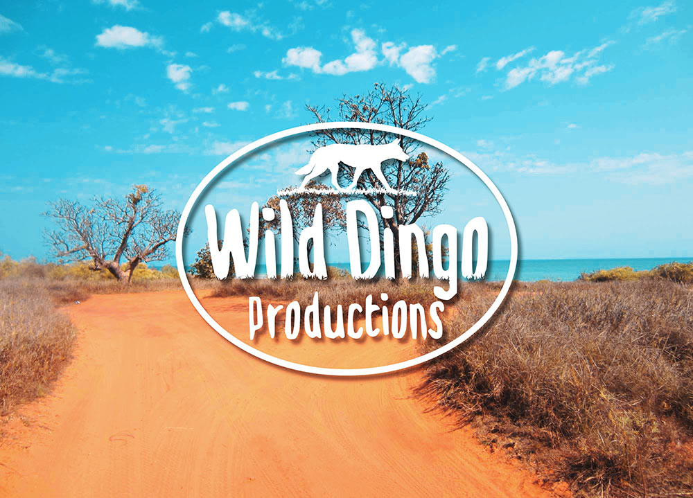 Wild Dingo Productions Logo Design